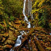 Mingus Falls Poster