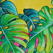 Mini Tropicals 3 Poster
