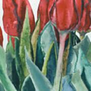 Mini-valentine Tulips - 2 Poster
