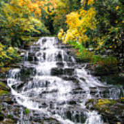 Minnihaha Falls In Autumn Poster