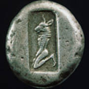 Minotaur On A Greek Coin Poster