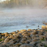 Mississippi River Duck Duck Dawn Poster