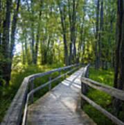 Mississippi Riverwalk Trail - Carleton Place, Ontario Poster