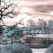 Missouri Botanical Garden Infrared Pond Blue Poster