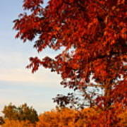 Missouri Fall Poster