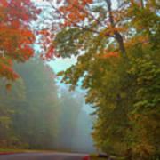Misty Autumn Road Poster
