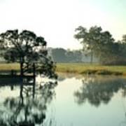 Misty Morning Pond Poster