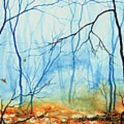 Misty November Woods Poster