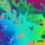 Mixed Gladioli Poster