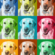 Golden Retriever Warhol Poster