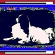 Mod Dog Poster