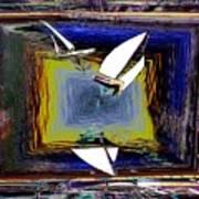 Model Sailboats Poster
