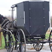 Modern Amish Horse And Buggy Poster