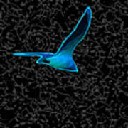 Moewe - Seagull Poster