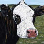 Mohawk Cow Poster