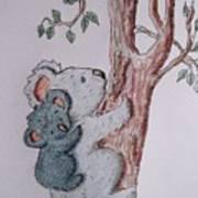 Momma And Baby Koala Poster