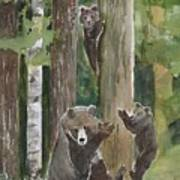 Momma With 4 Bear Cubs Poster