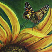 Monarch Butterfly On A Sunflower Poster