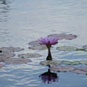 Monet Memory Poster