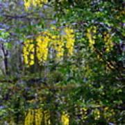 Monet's Garden Abstract II Poster