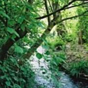 Monet's Garden Stream Poster