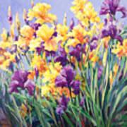 Monet's Iris Garden Poster