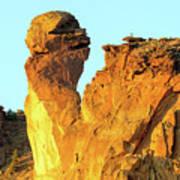 Monkey Face Pillar At Smith Rock Poster