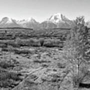 Montana Mountainscape Poster