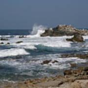 Monterey Coastline Poster