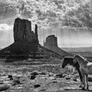 Monument Valley Horses Poster