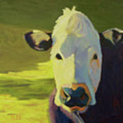 Moo To You Poster