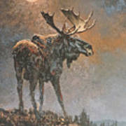 Moon Dusted Moose Poster
