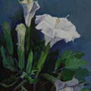 Moon Flower  Poster