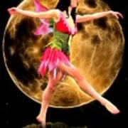 Moonlight Stroll Of A Fairy Poster