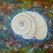 Moonsnail Lace Poster