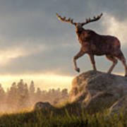 Moose At Dawn Poster