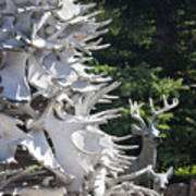 Moose Horn Tree Poster