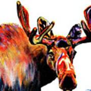 Moose In Orange Poster