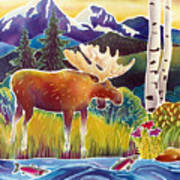 Moose On Trout Creek Poster