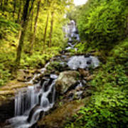 Morning At Amicalola Falls Poster