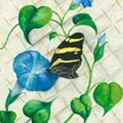 Morning Glories And Butterfly Poster