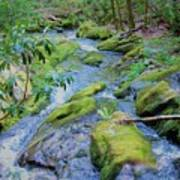 Mossy Blue Brook Poster