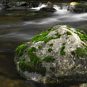 Mossy Boulder In Mountain Stream Poster