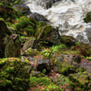 Mossy Rocks And Water Stream Poster