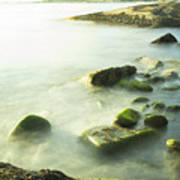 Mossy Rocks On Shoreline Poster