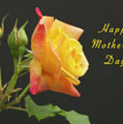 Mothers Day Card 4 Poster