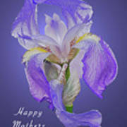 Mothers Day Card 7 Poster