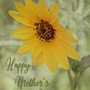 Mother's Day Sunflower Poster