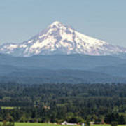 Mount Hood In The Summer Poster