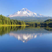 Mount Hood On A Sunny Day Poster